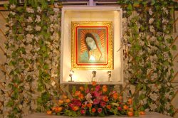 Image of the Virgin of Guadalupe
