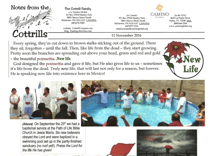 Notes from the Cottrills - November 2016 a